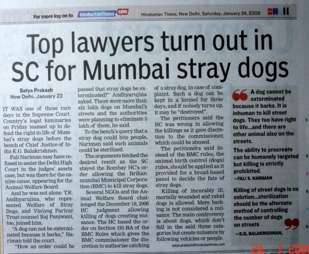 Indian Street Dogs and their 'rights' | JAAGRUTI®