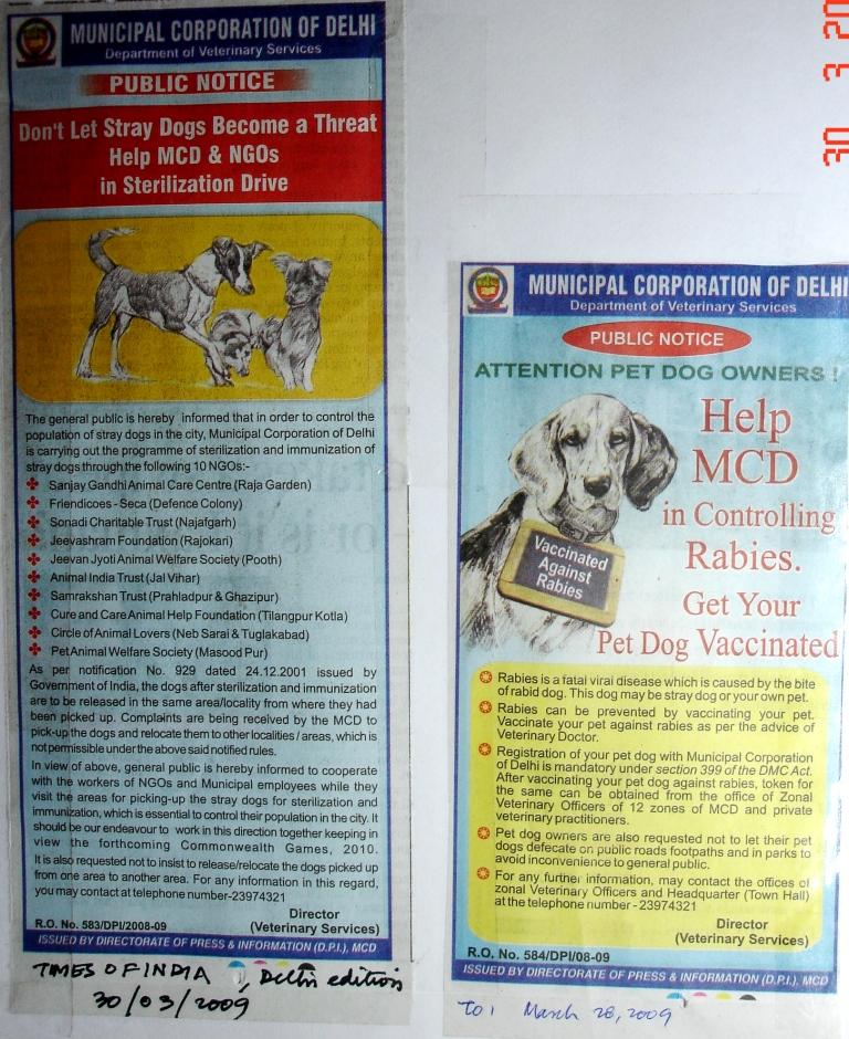 Animal rights persuasive essay