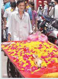 Lallu- the street dog being bid farewell