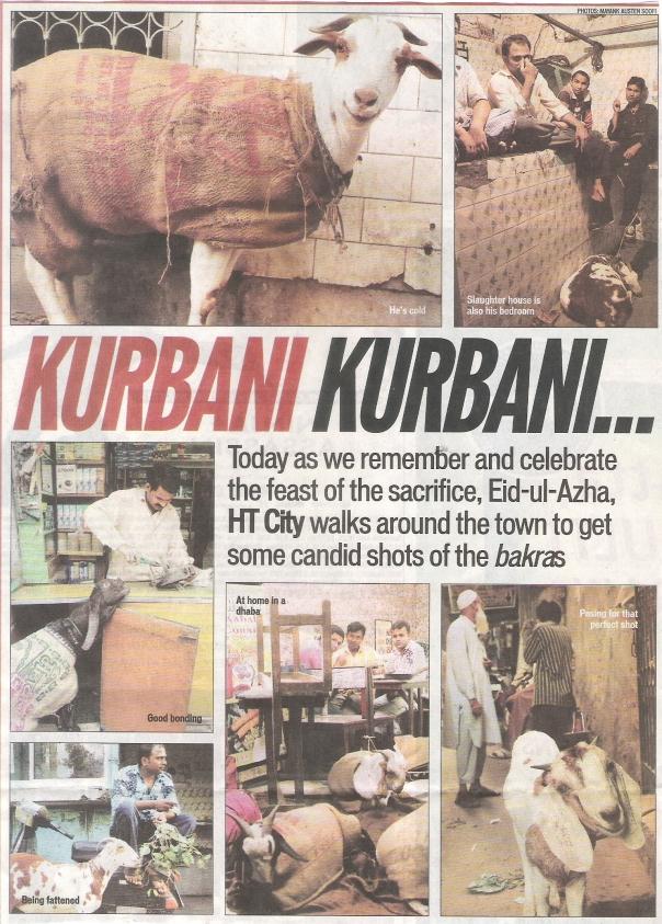 kurbaan-kurbaani_goats-before-being-scarificed-on-id_ht-city_281109
