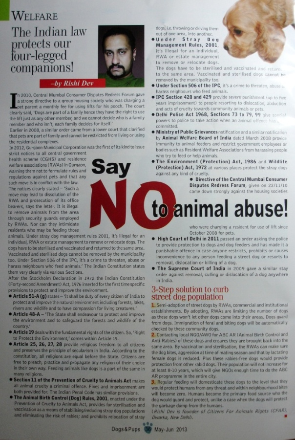 The Indian Law protects our four-legged companion_Article Scan