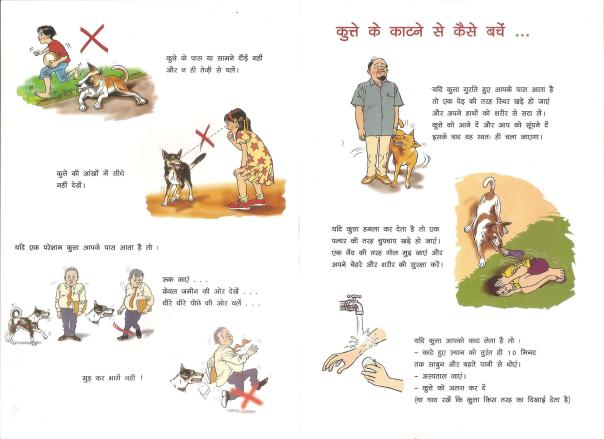 How to behave with a street dog_courtesy WSPA India (3)