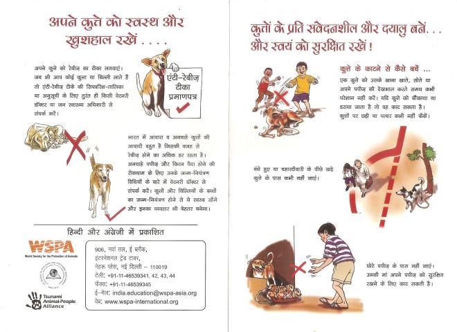 How to behave with a street dog_courtesy WSPA India (4)