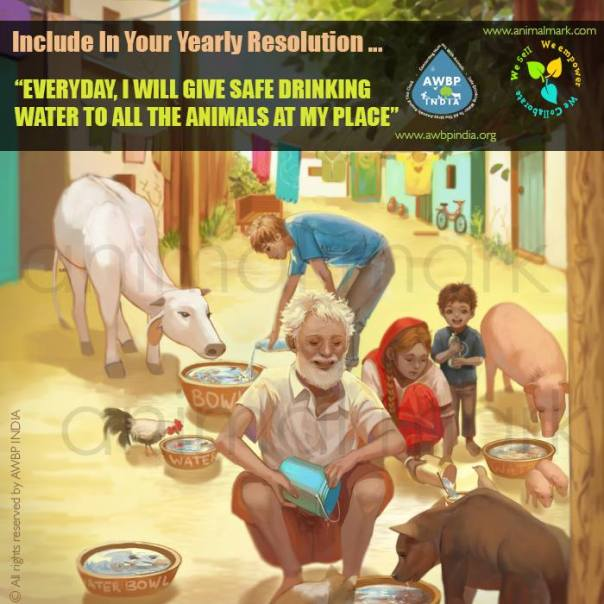 AWBP India_Animal Water Bowl Project